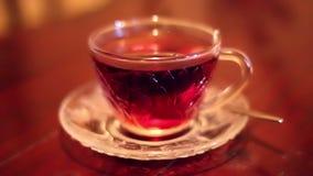 Zachte geconcentreerde het brouwen hete zwarte thee stock videobeelden