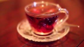 Zachte geconcentreerde zwarte die thee met warm water wordt gebrouwen stock videobeelden
