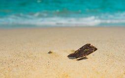 Zachte golf van het overzees op de zandige strandzomer, kust, lagune, kust Stock Foto