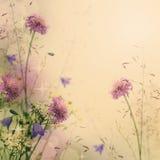Zachte kleuren bloemenachtergrond Royalty-vrije Stock Fotografie