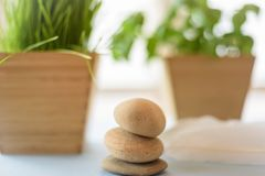 Zachte nadrukachtergrond met natuurlijke elementen - stenen, groen a Stock Foto