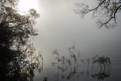 Zachte rimpelingen in nevelig landschap Vreedzame dikke mist stock foto's
