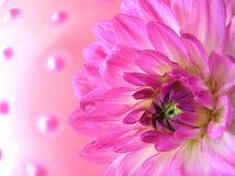 Zachte roze ballen royalty-vrije stock afbeelding