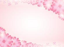 Zachte roze bloem heldere achtergrond Royalty-vrije Stock Afbeelding