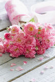 Zachte roze rozen op houten lijst. Stock Afbeeldingen