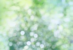 Zachte roze vage achtergrond Stock Fotografie