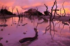 Zachte zonsondergang in Papandayan Stock Afbeeldingen