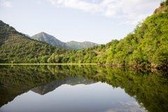 Zaciszność nawadnia Jeziorny Skadar w Montenegro fotografia royalty free
