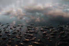 Zaciszność nawadnia w Stokksnes, Iceland zdjęcie stock