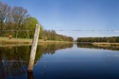 Zaciszność przy jeziorem Fotografia Stock