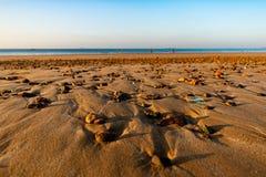 Zaciszność przy sandbeach zdjęcie royalty free