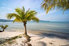 zaciszność raju pusta plaża w koh rong wyspie blisko Sihanoukville fotografia royalty free