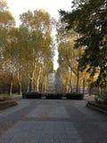 Zaciszności jesieni i parka liście wśrodku Niemcy zdjęcia royalty free