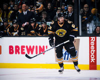 Zack Hamill Boston Bruins Fotografie Stock