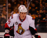 Zack Smith Ottawa Senators Royalty Free Stock Image