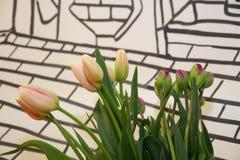 Zacken Sie Tulpen aus Stockbild