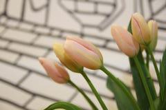 Zacken Sie Tulpen aus Stockfotografie