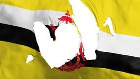 Zackige Brunei-Flagge lizenzfreie abbildung