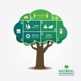 Zackiger banner.environment Konzeptvektor des Infographic-Grün-Baums Stockfotos