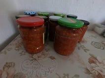 Zacusca traditionell rumänsk mat fotografering för bildbyråer