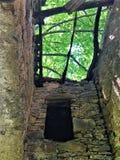 Zaczarowany dach, promienie, światła, drzewa i ruiny, zdjęcie royalty free