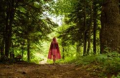 Zaczarowany las i ścieżka Obrazy Stock
