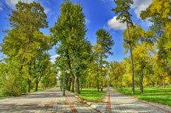 Zaczynać jesień w miasto parku Zdjęcia Royalty Free