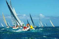 Zaczyna regatta żeglowania jachty żeglowanie Luksusowy jacht Zdjęcie Stock