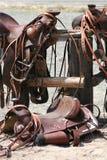 Zadels Stock Foto
