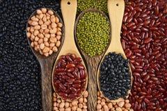 Zaden beansBlack Boon, Rode Boon, Pinda en Mung Boon nuttig voor gezondheid in houten lepels op grijze achtergrond royalty-vrije stock afbeelding