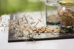 zaden en kruiden op lijst stock foto