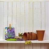 Zaden en planters Royalty-vrije Stock Foto's