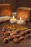 Zaden van argan met gele kosmetische parel Stock Foto's