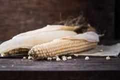 Zaden van droog graan op de lijst Droog graan in stam met dood graangebied op achtergrond Geel Oor van Suikermaïs op het gebied royalty-vrije stock afbeelding
