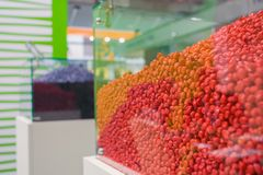 Zaden van graanhybriden met toegepaste insecticiden, fungiciden en meststoffen tegen ziekten en ongedierte te beschermen stock afbeelding