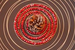 Zaden van granaatappel royalty-vrije stock afbeeldingen