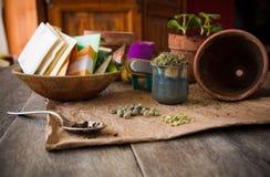 Zaden voor het planten royalty-vrije stock afbeelding