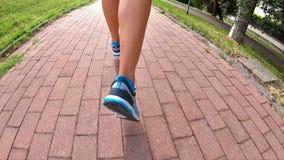 Zadka gym jogging buty zdjęcie wideo