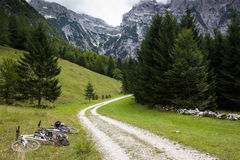 Zadnija dal, Julian Alps, Slovenien Arkivbild