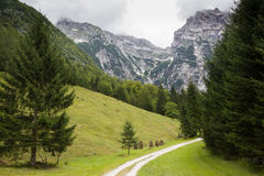 Zadnija valley, Slovenia. Panoramatic valley in Julian Alps, Slovenia Stock Image