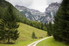 Zadnijavallei, Slovenië Stock Afbeelding