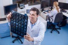 Zadowolona przystojna lekarka trzyma móżdżkowego radiograph Zdjęcia Royalty Free