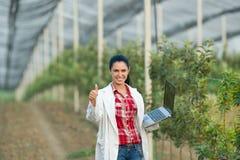 Zadowolony kobieta agronom w sadzie Obrazy Royalty Free