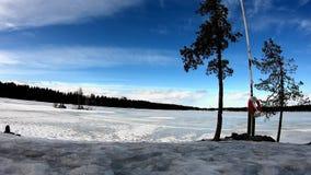 Zadowolony natura krajobraz 4K z niebem, chmurą i śniegiem w zimy kraina cudów w Europe, otaczał z brzoz sosnami zdjęcie wideo