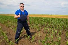Zadowolony rolnik na kukurydzanym polu Zdjęcie Stock