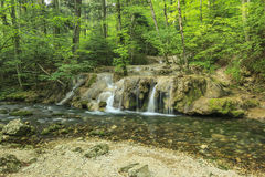 Zadziwiać kaskady i jasną rzekę w lesie, Beusnita park narodowy, Rumunia Fotografia Royalty Free