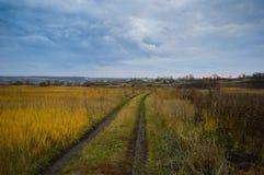 Zadziwiać kolory jesień zdjęcie stock