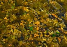 Zadziwiać kolory, tekstury podwodny świat fotografia royalty free