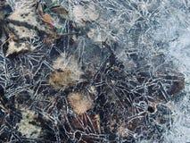 Zadziwiać wzory na lodzie zdjęcie royalty free