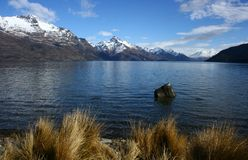 Jeziorny Wakatipu Obrazy Royalty Free